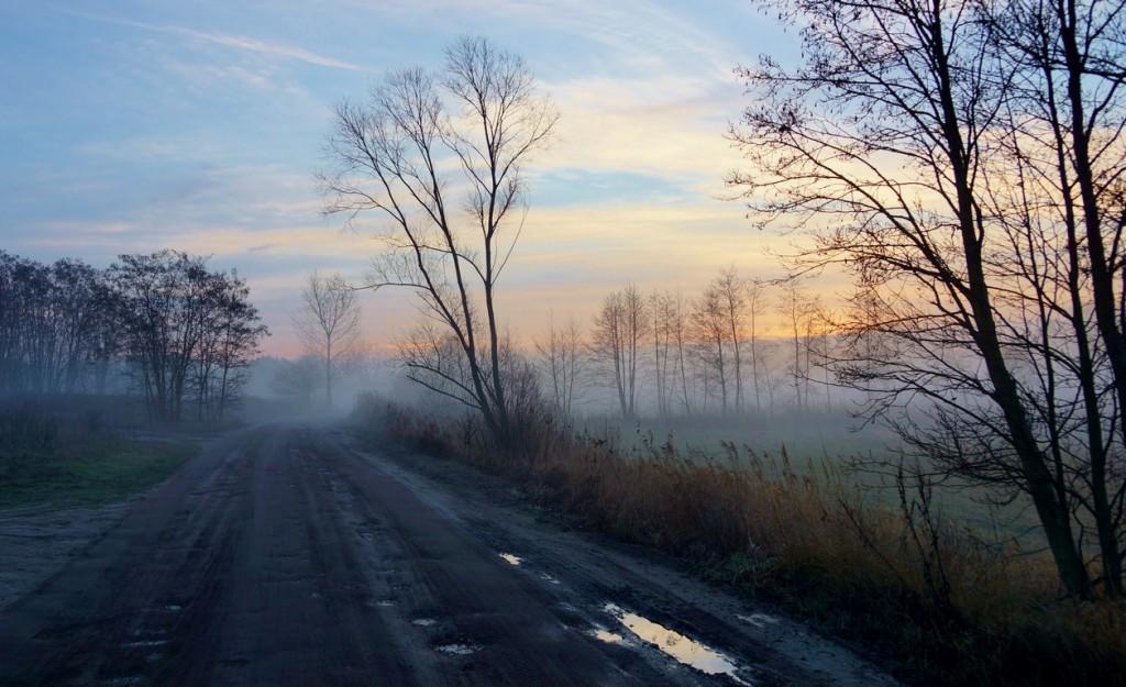 Zdjęcia: Tarkowo, Kuj-pom, Droga o świcie, POLSKA