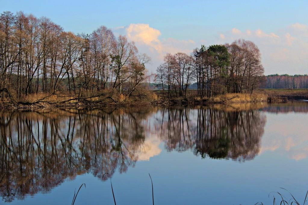Zdjęcia: Miotek - Zielona, Śląskie, w lustrze natury, POLSKA