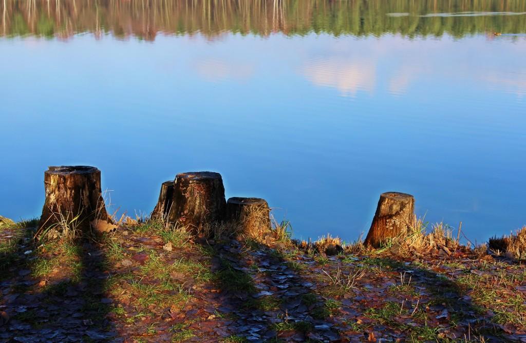 Zdjęcia: Miotek - Zielona, Śląskie, pozostały tylko cienie..., POLSKA