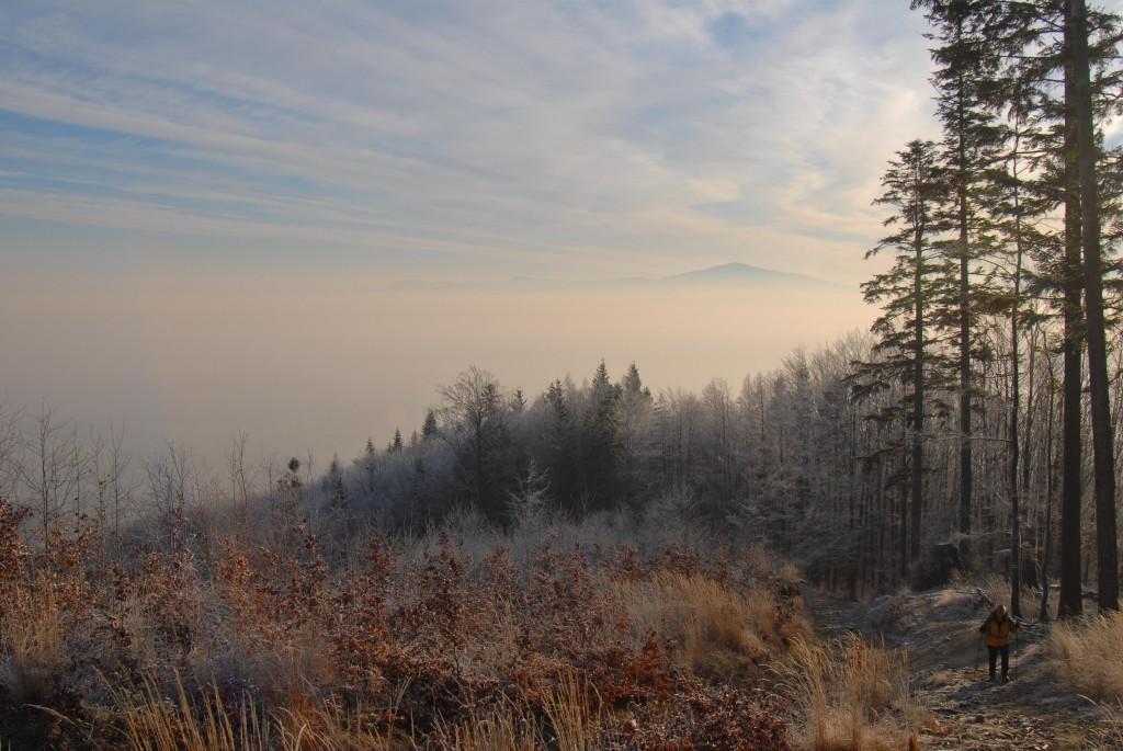Zdjęcia: Skrzyczne, Beskid Śląski, Pod górę, POLSKA