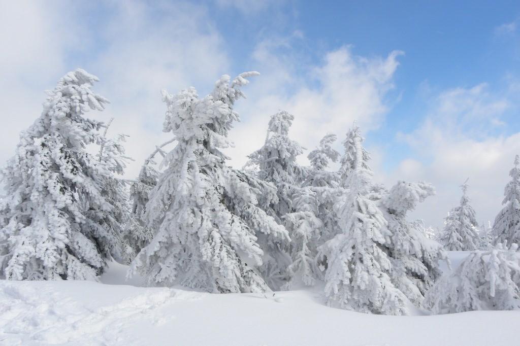Zdjęcia: Pilsko, Beskid Żywiecki, śnieg , POLSKA