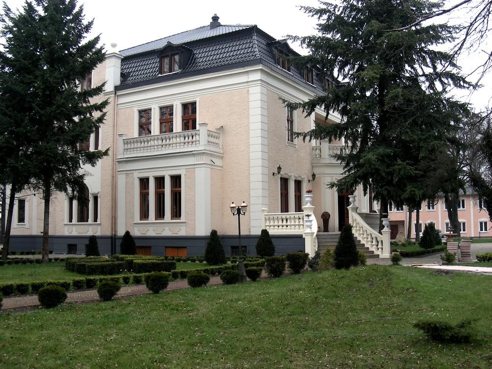 Zdjęcia: Groszowice, opolskie, Pałac w Groszowicach, POLSKA