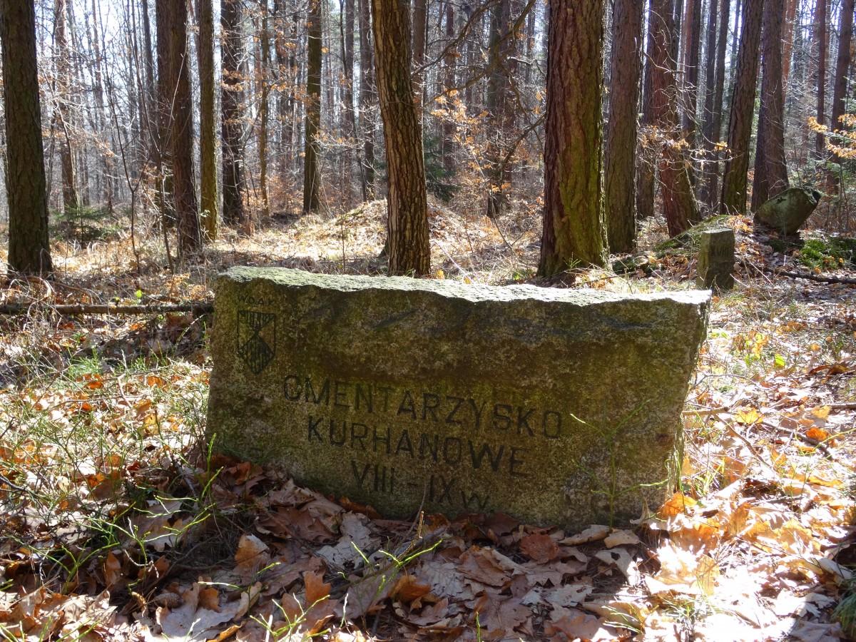Zdjęcia: Będkowice, dolnośląskie, Cmentarzysko kurhanowe VIII - IX w, POLSKA