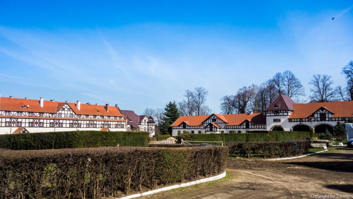 Zdjęcia: Wałbrzych, Dolnośląskie, Stadnina w Książu, POLSKA