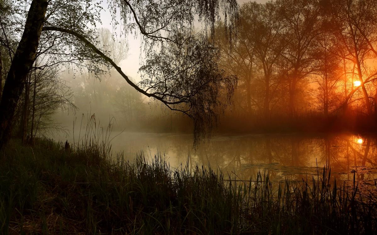 Zdjęcia: Dolina Noteci, pow-żniński, Majowe mgły-2, POLSKA
