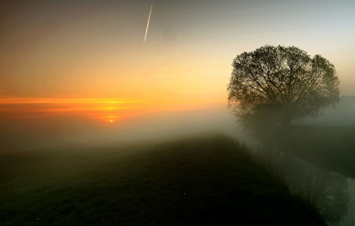 """Zdjęcia: Dolina Noteci, pow-żniński,  """"Mgła nad łąką"""", POLSKA"""