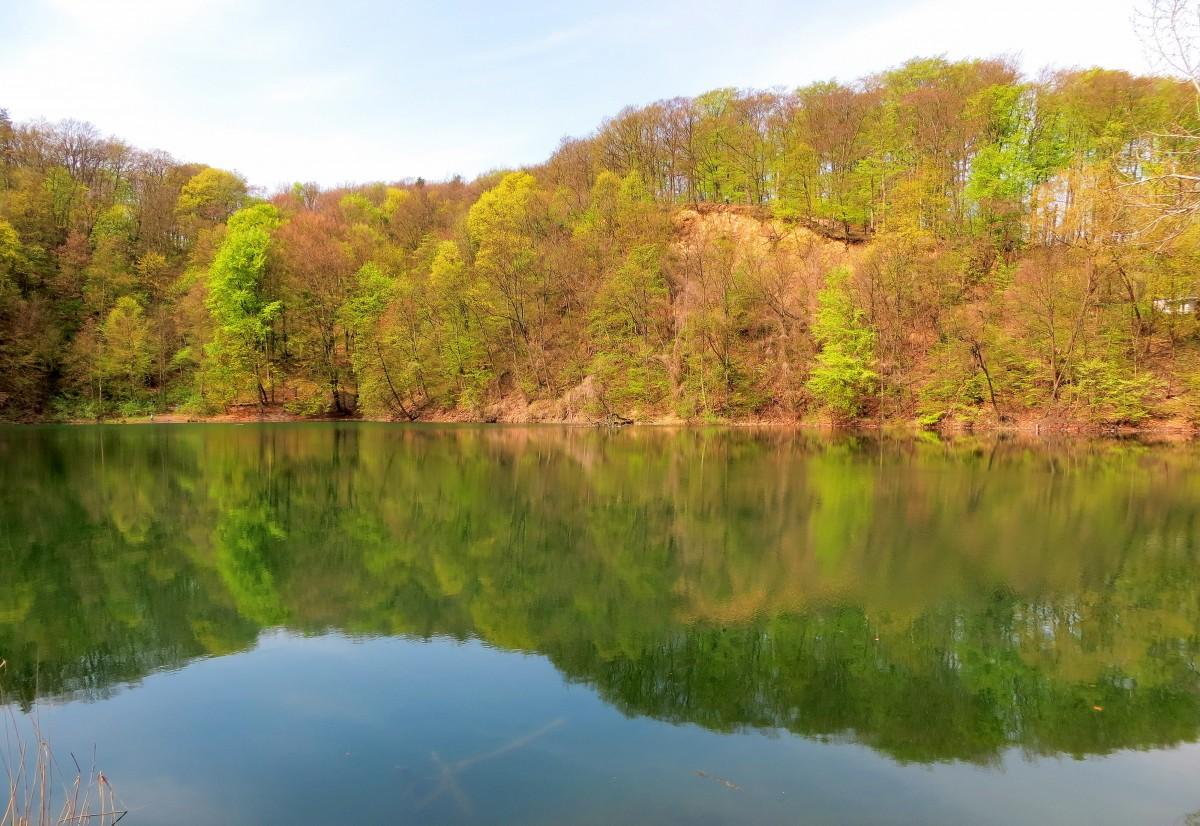 Zdjęcia: Szczecin-Zdroje, Jezioro Szmaragdowe w Puszczy Bukowej, Zachodniopomorskie, wiosenne barwy puszczy..., POLSKA