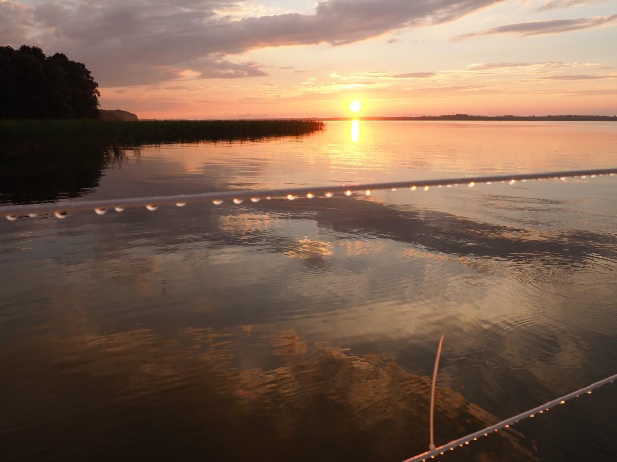 Zdjęcia: jezioro Niegocińskie, Mazury, Pejzaż z kropelkami deszczu, POLSKA