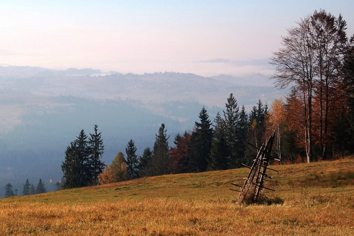 Zdjęcia: GSB, Beskid Śląski, cisza jak ta..., POLSKA