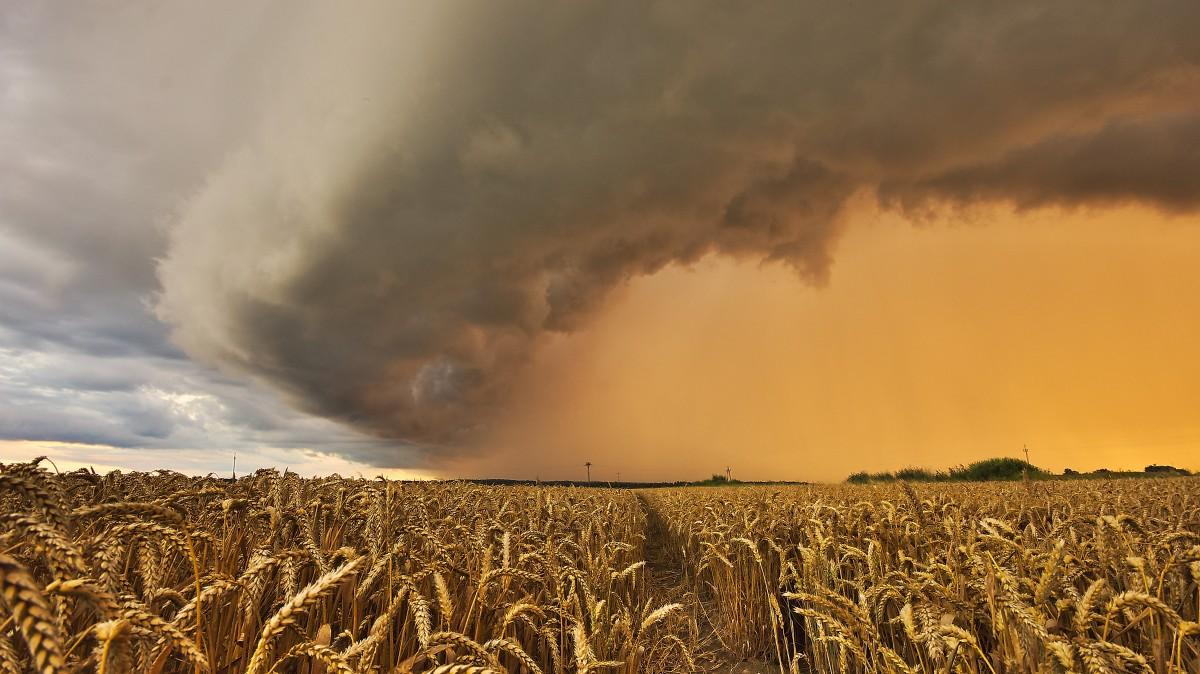 Zdjęcia: BRANIEWO , warmia , burza  na Warmii, POLSKA