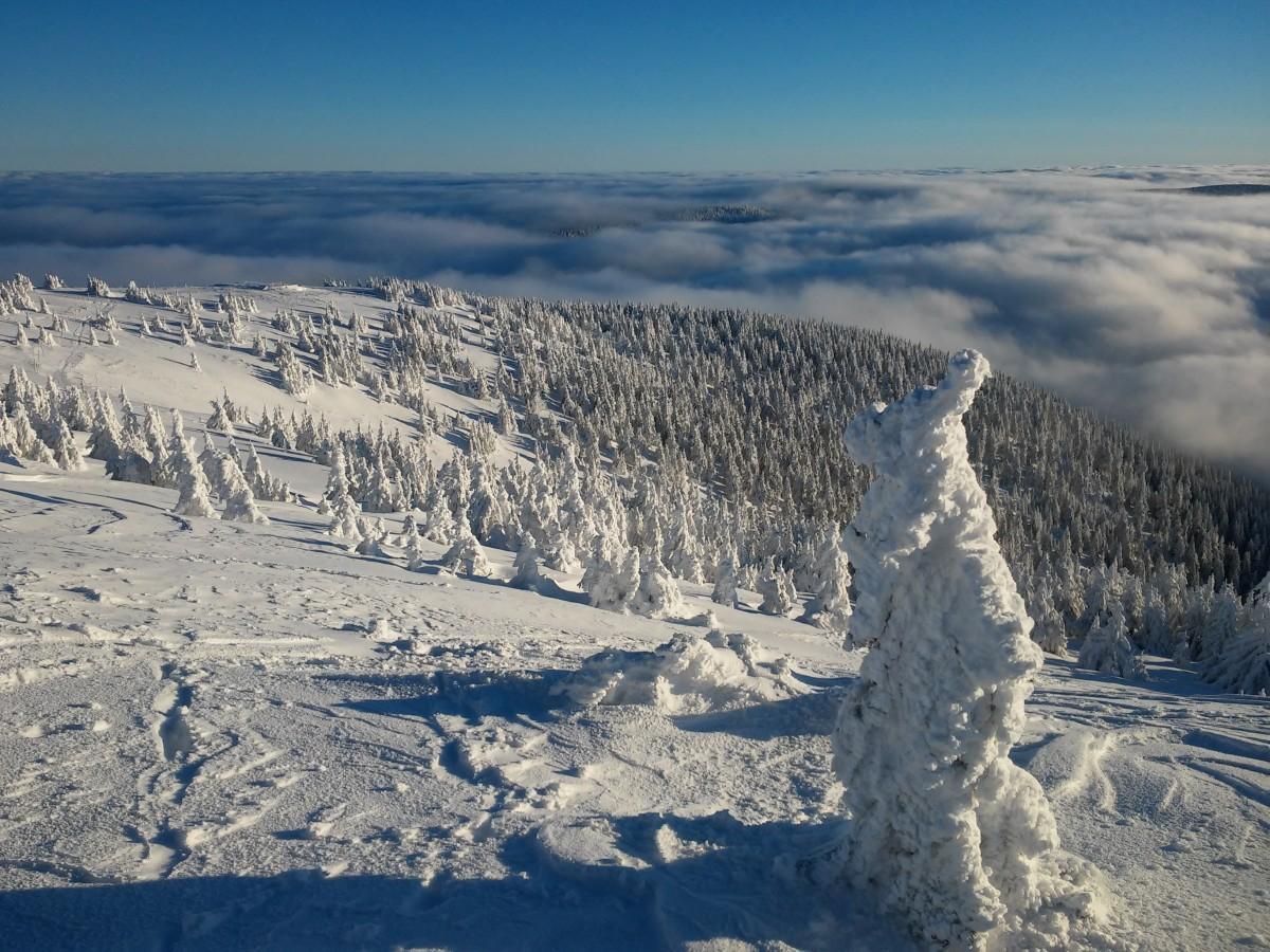 Zdjęcia: śnieżnik, karkonosze, mroźny Śnieżnik, POLSKA