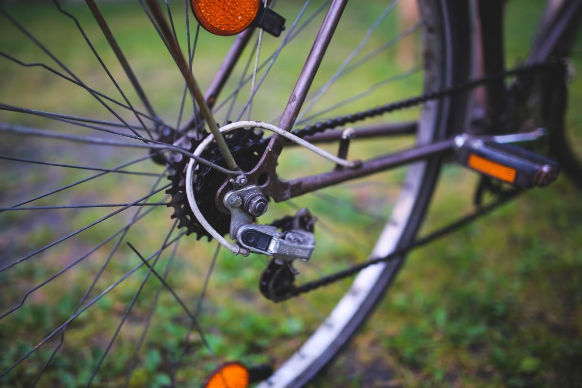 Zdjęcia:  , Bałtyk, Trasy rowerowe - Art. Spons., POLSKA
