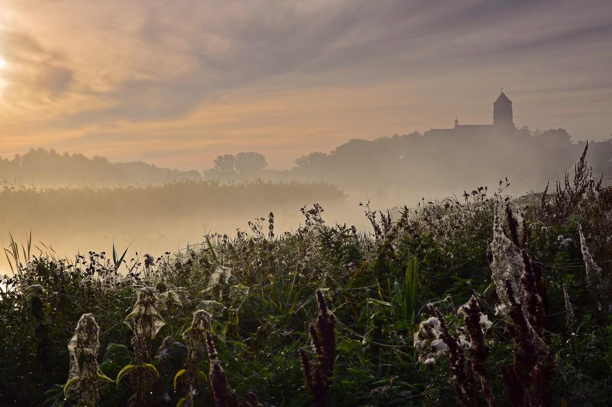 Zdjęcia: Rezerwat Łęgi Wieliszewskie, Mazowsze, Piękno poranka...., POLSKA