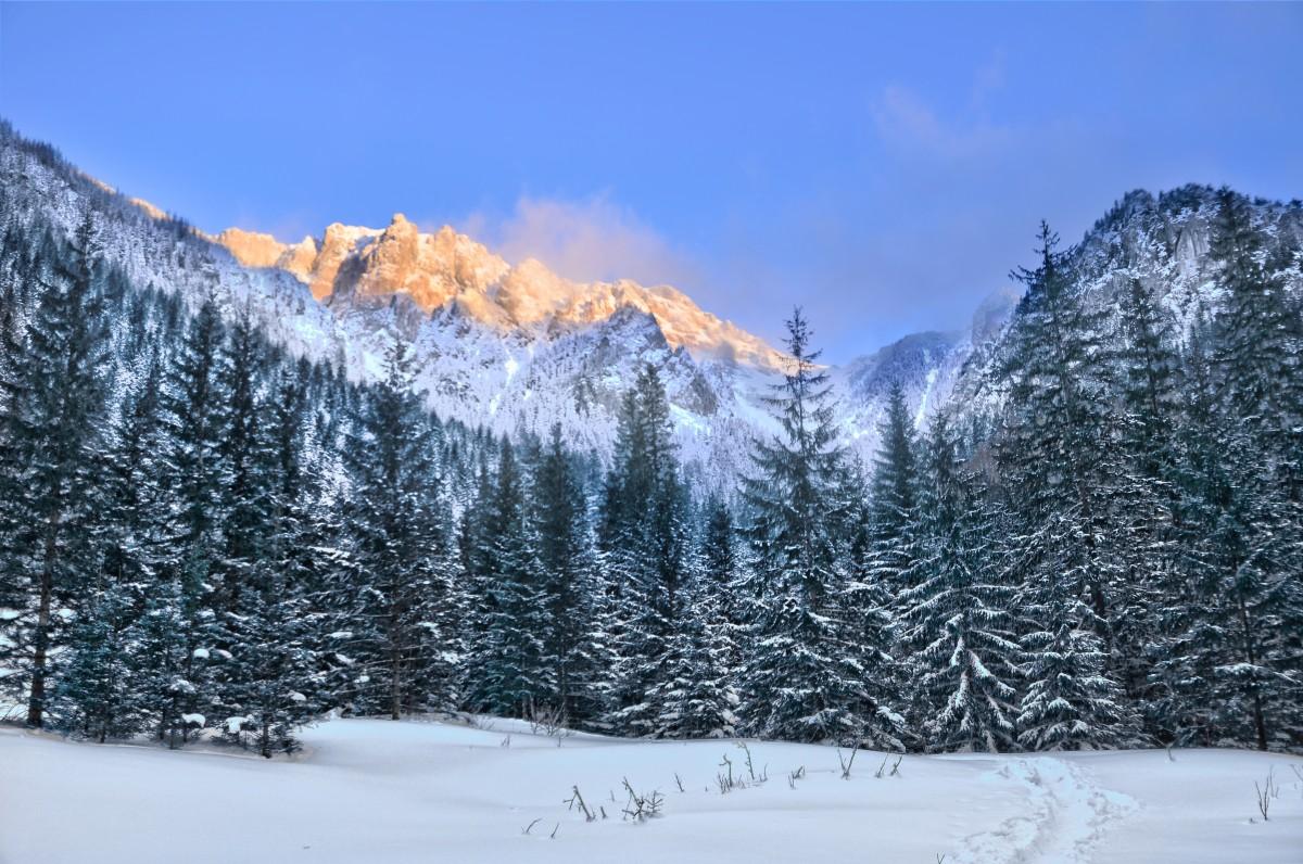 Zdjęcia: Dolina Kościeliska, Małopolska, Świetlista góra, POLSKA