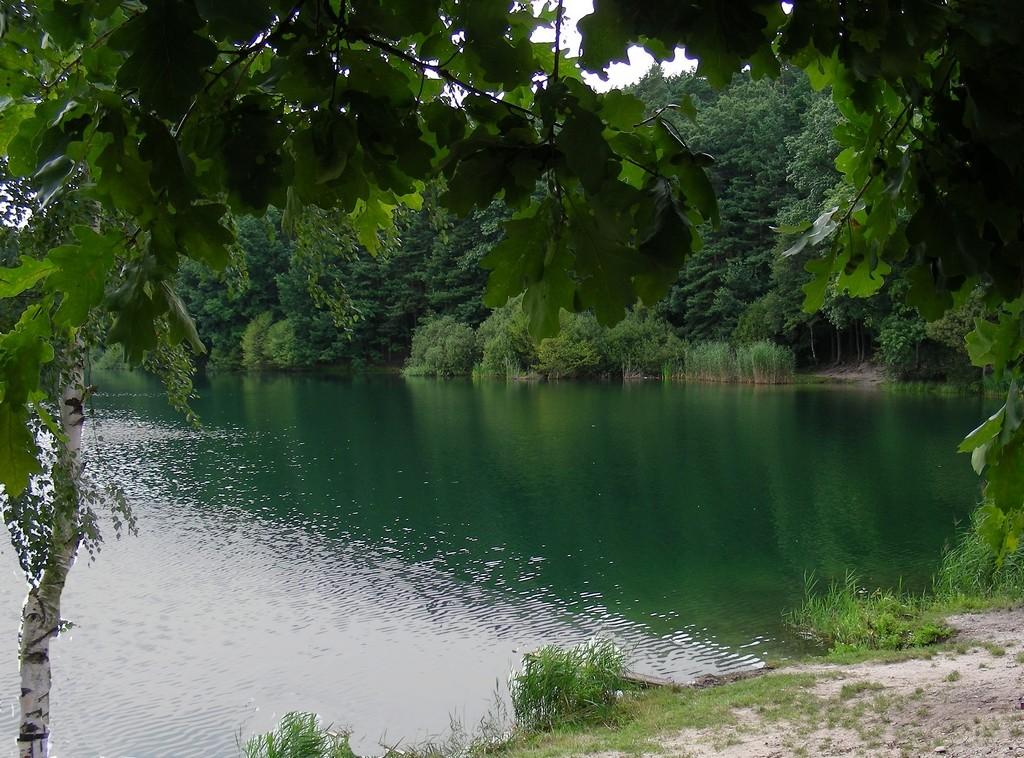 Zdjęcia: Trzęsina koło Turawy, opolskie, Jezioro Srebrne, POLSKA