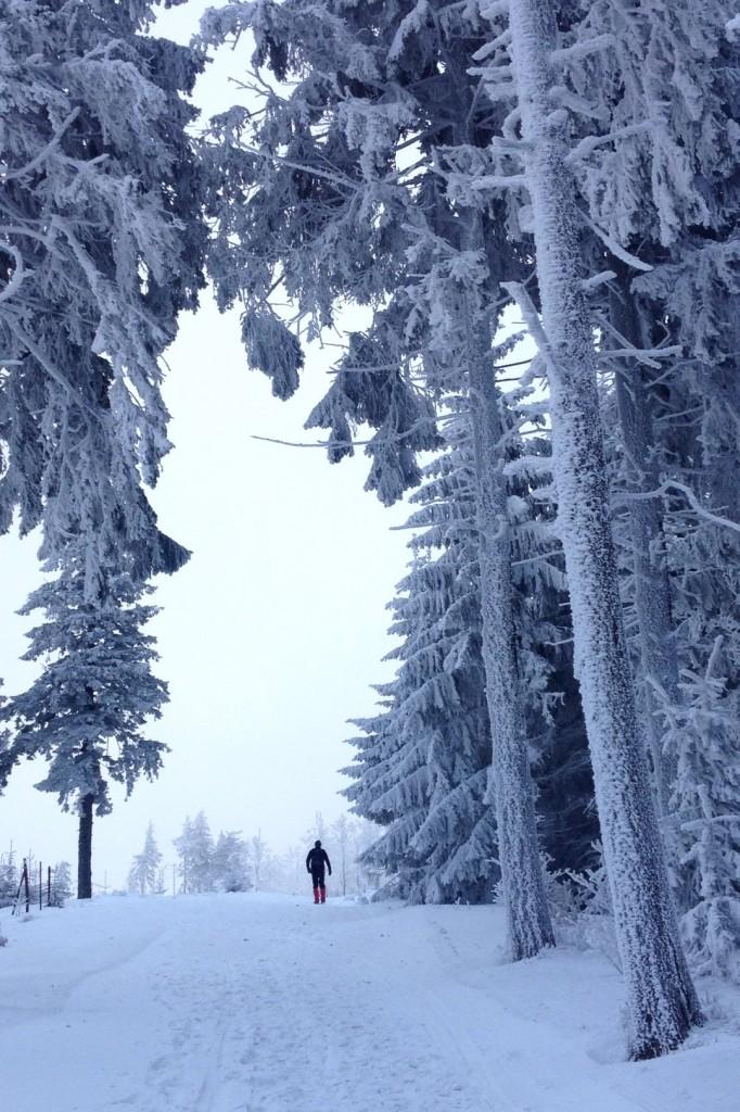 Zdjęcia: Klimczok, Śląskie, Na szlaku, POLSKA