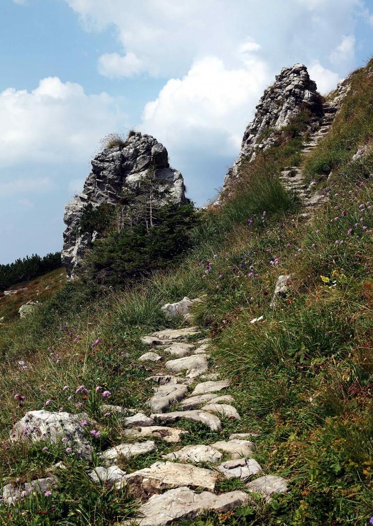 Zdjęcia: Czerwone Wierchy, Tatry, Ścieżka, POLSKA