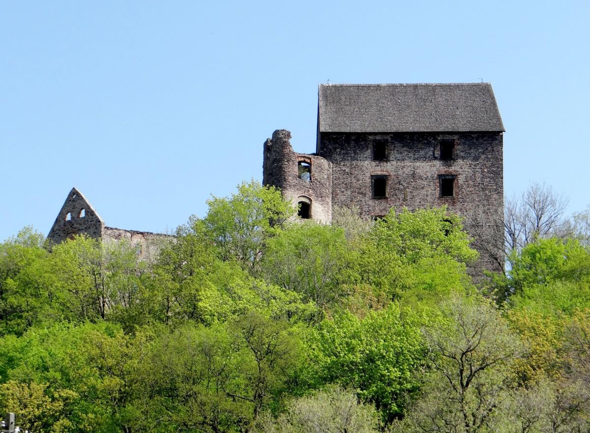 Zdjęcia: Świny, Pogórze Kaczawskie, Zamek Świny, POLSKA