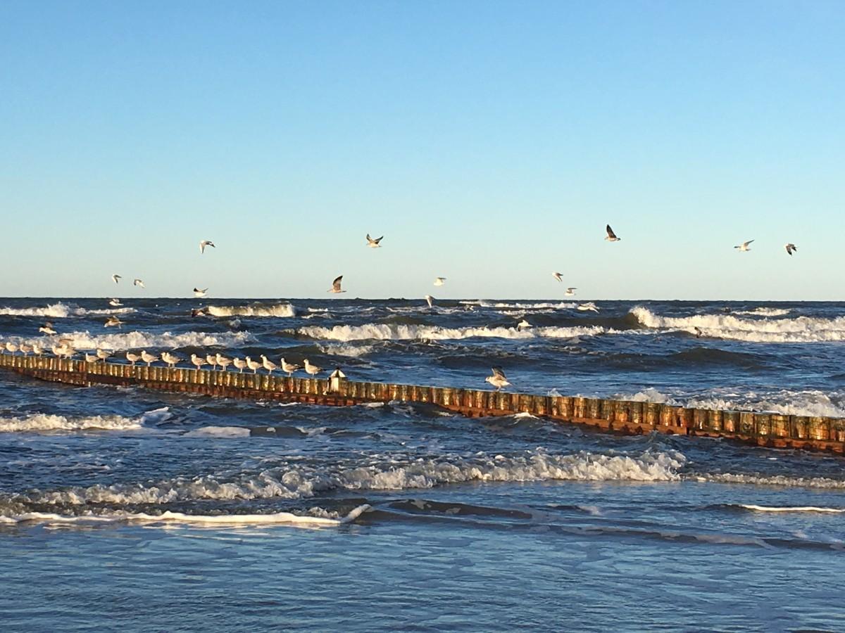 Zdjęcia: Łeba, Pomorze, Polskie morze, POLSKA