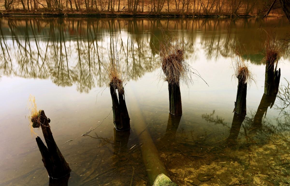 Zdjęcia: Dolina Brdy, Bory Tucholskie,  Tęsknota za wiosną!, POLSKA