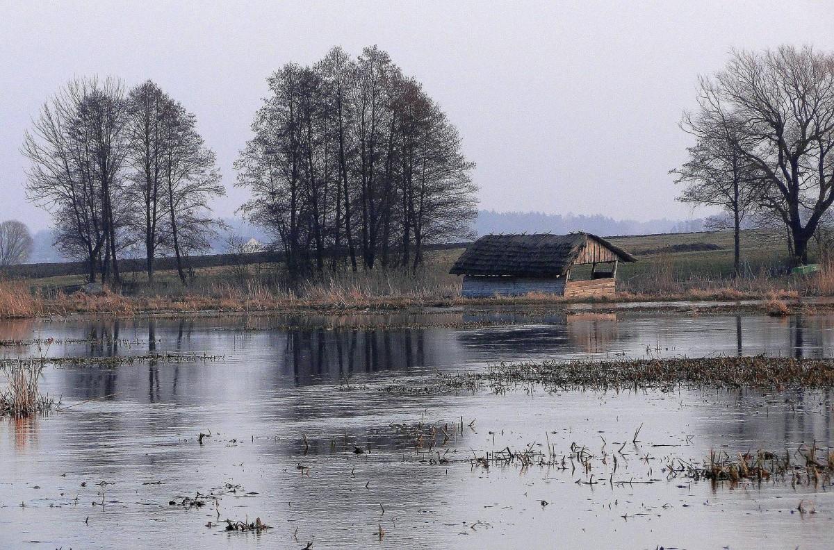 Zdjęcia: Waniewo, Podlasie, Wieczór nad Narwią., POLSKA