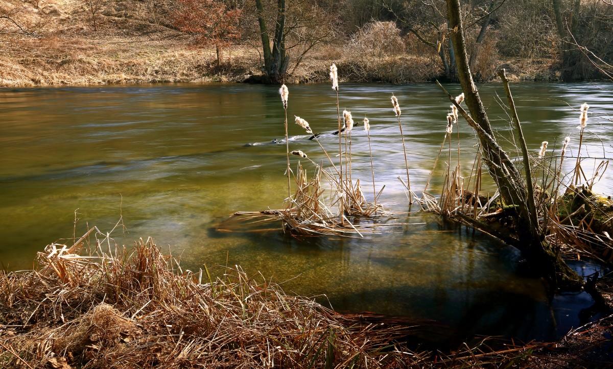 Zdjęcia: Dolina Brdy, Bory Tucholskie, Wiosna tuż,tuż!, POLSKA