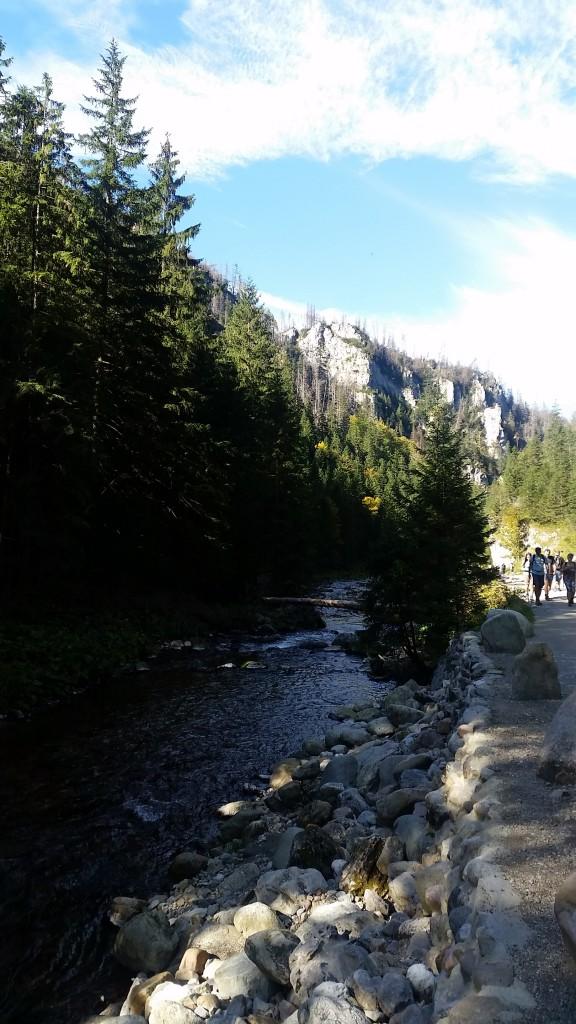 Zdjęcia: Dolina Kościeliska, Zakopane, Krajobraz, POLSKA