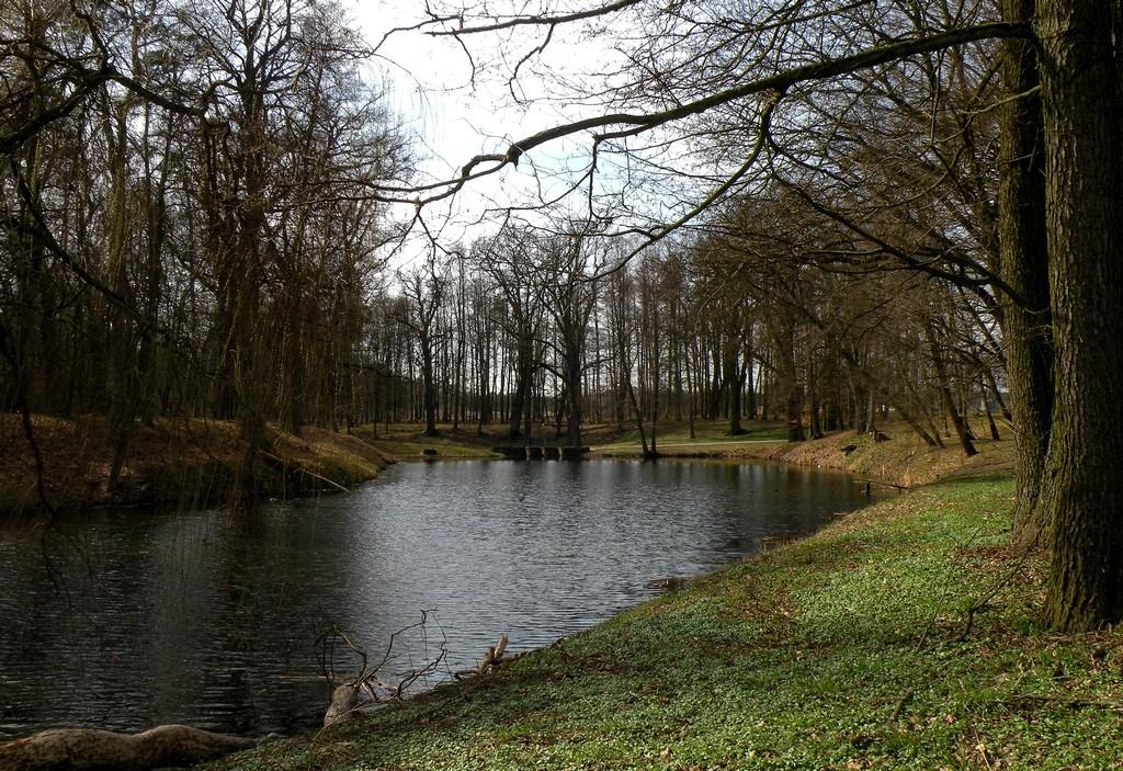 Zdjęcia: Radawie, opolskie, Park przypałacowy, POLSKA