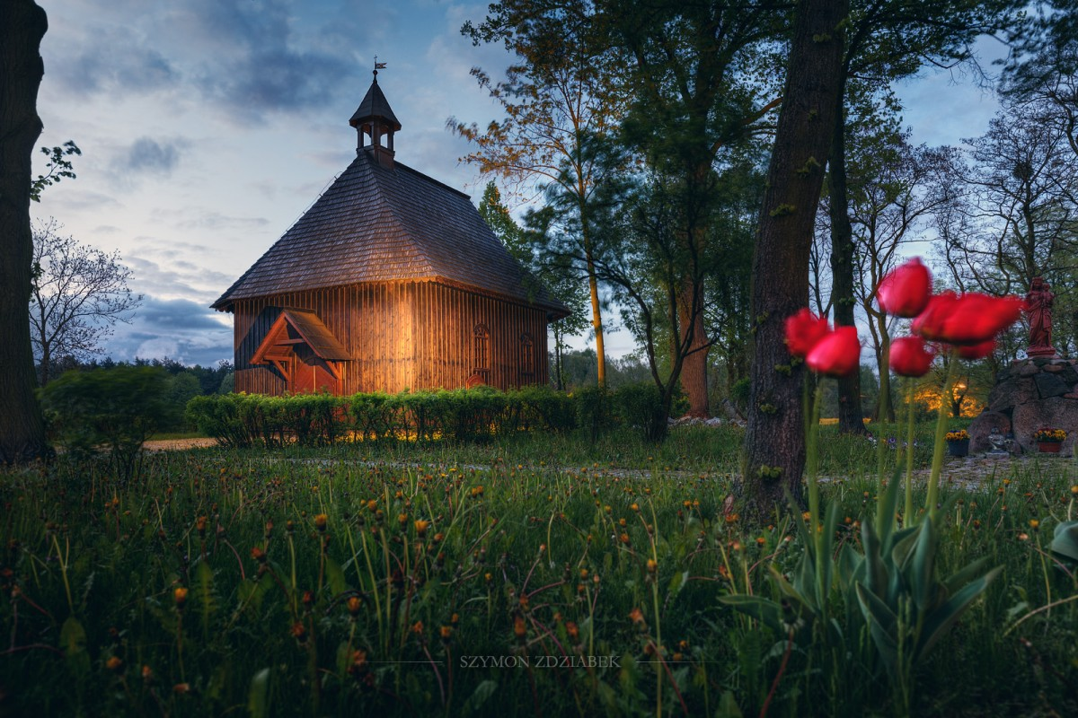 Zdjęcia: Września, Wielkopolska, Kościół Św. Krzyża, POLSKA