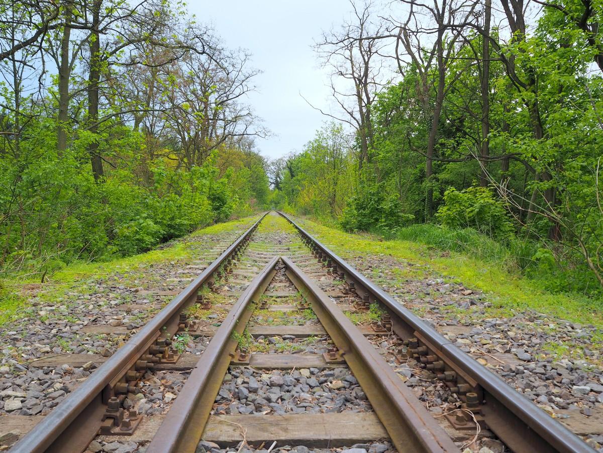 Zdjęcia: Łagów Lubuski, na wiadukcie kolejowym, Ziemia Lubuska, zostało wspomnienie..., POLSKA