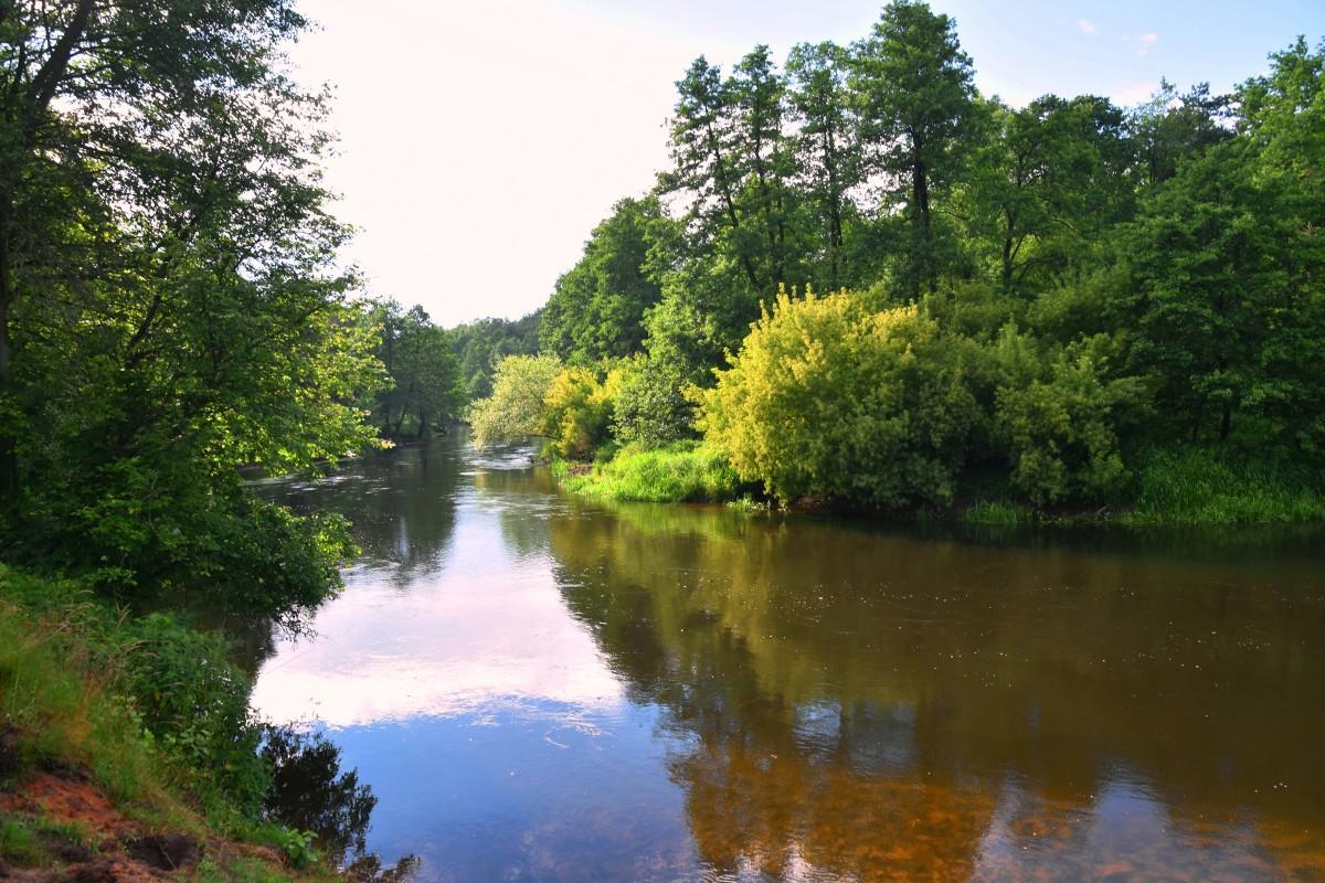Zdjęcia: gdzieś za Brodnicą, województwo kujawsko-pomorskie, Widok na rzekę, POLSKA