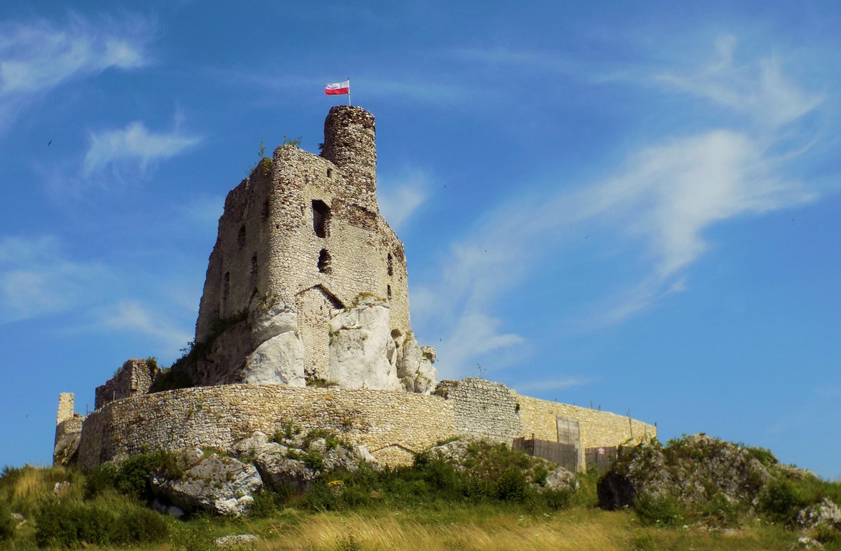 Zdjęcia: Mirów, śląskie, Ruiny zamku w Mirowie, POLSKA