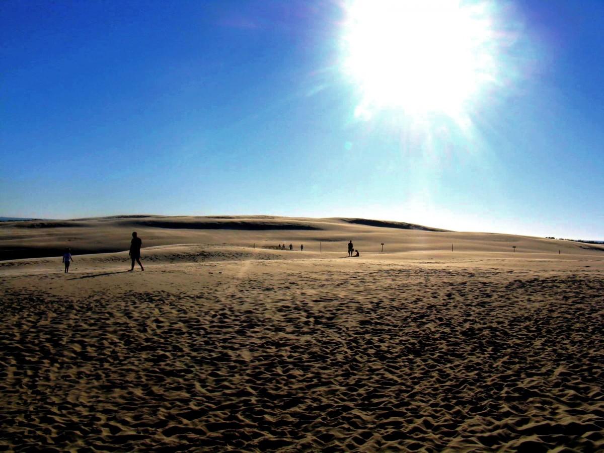 Zdjęcia: Łeba, Pomorze, Polska Sahara, POLSKA
