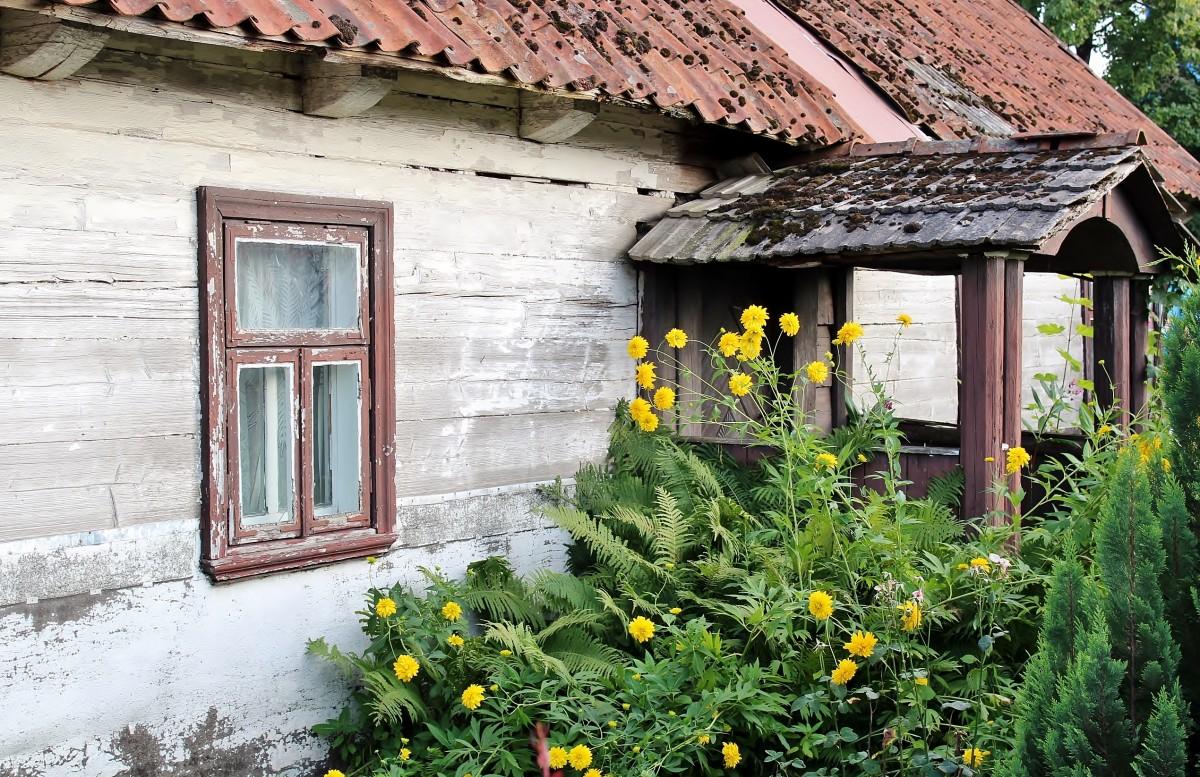 Zdjęcia: Narew, województwo podlaskie, Stara chata, POLSKA