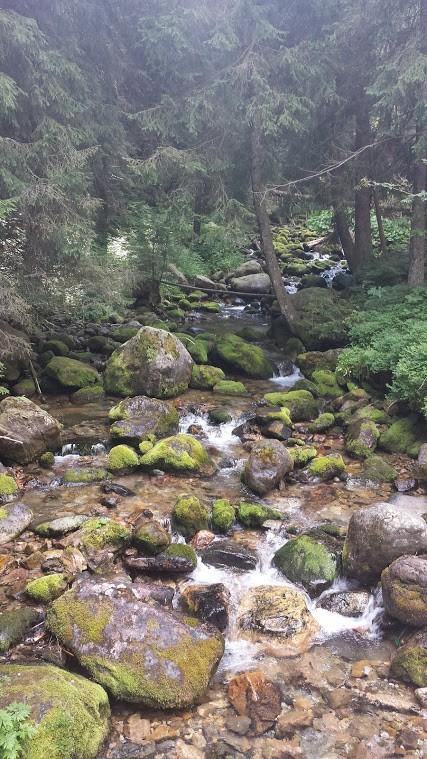 Zdjęcia: Tatry, Tatry, Kocham Polskie Góry, POLSKA