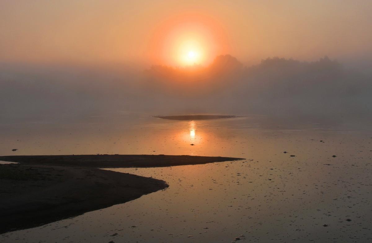 Zdjęcia: gdzieś za Sandomierzem, woj. podkarpackie, Świt na wyspie, POLSKA