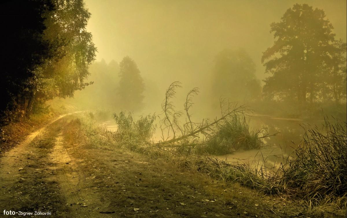 Zdjęcia: Dolina Noteci,  pow-żniński , Mgły..., POLSKA