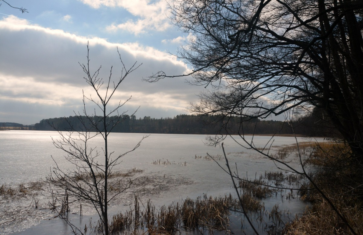 Zdjęcia: O.O.Ś. Małe Gacno, Park Narodowy Borów Tucholskich, Skute lodem, POLSKA