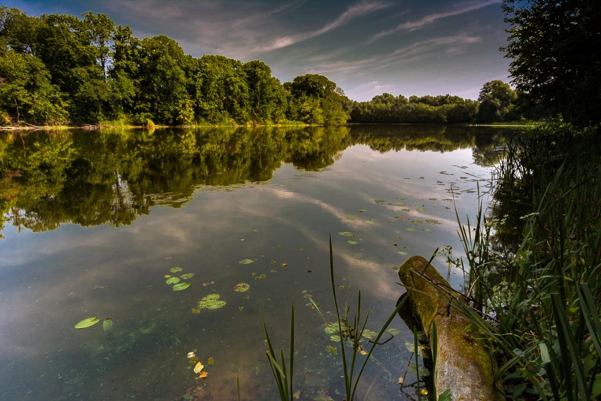 Zdjęcia: ., mazowsze,  Jezioro Rokola, POLSKA