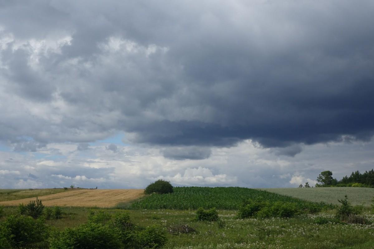 Zdjęcia: Okolice kielc, Kielce, Kieleckie, POLSKA