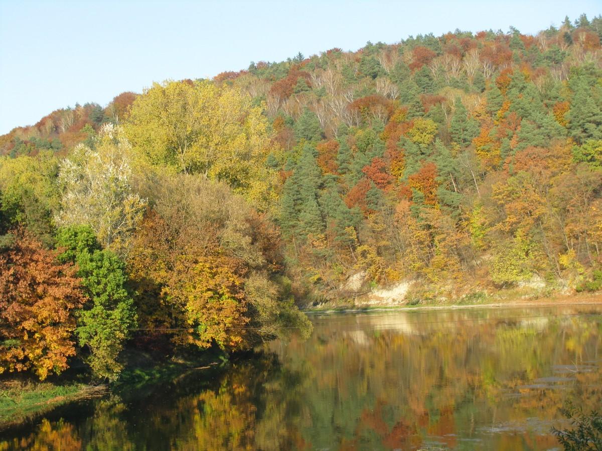 Zdjęcia: Krasiczyn, Podkarpacie, Jesień nad Sanem, POLSKA