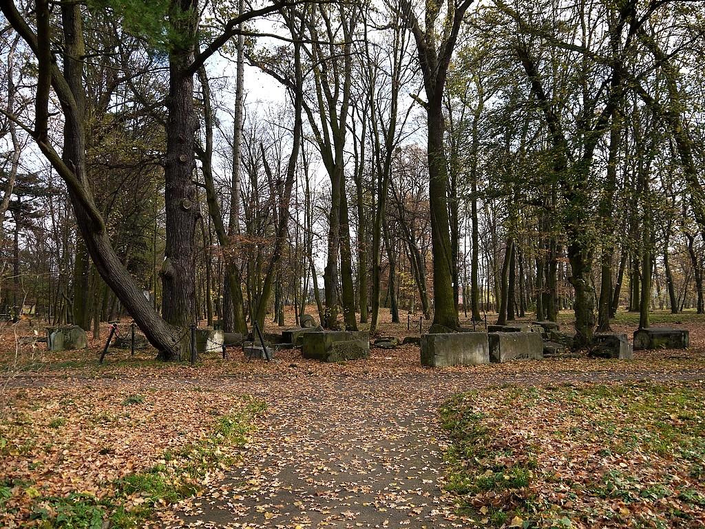 Zdjęcia: Skorogoszcz, opolskie, Resztki pałacu w parku, POLSKA