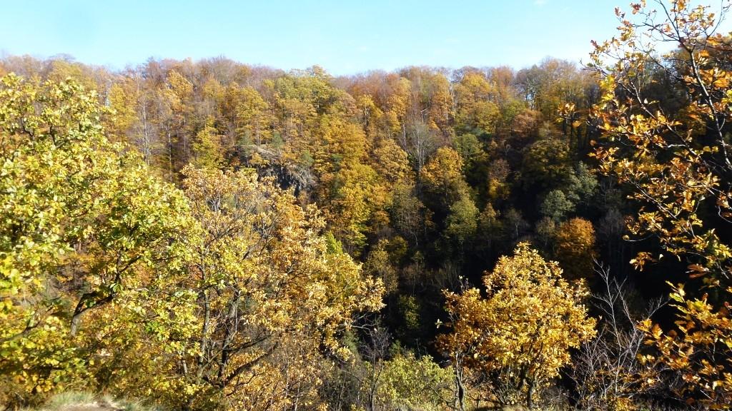 Zdjęcia: Wałbrzych, Dolny Śląsk, park zamkowy widok ze Starego Książa, POLSKA