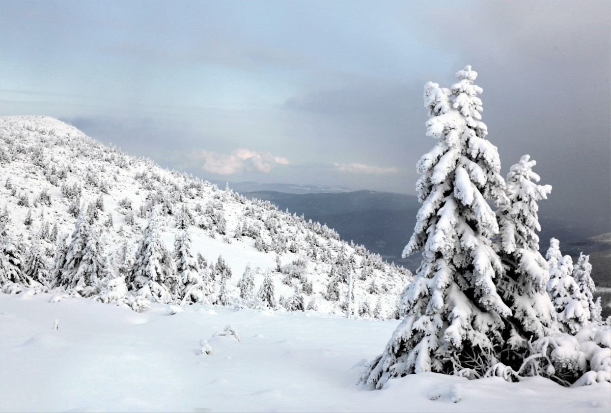 Zdjęcia: ., Karkonosze, W drodze na Śnieżkę, POLSKA