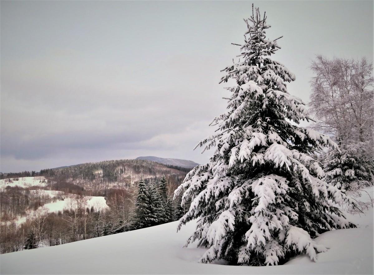 Zdjęcia: Rudawski Park Krajobrazowy, Dolny Śląsk, zimowy spokój..., POLSKA