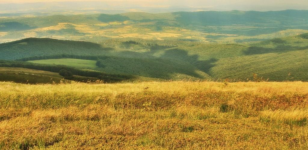 Zdjęcia: Bukowe Berdo, Bieszczady, Dobrze iść w słońcu, POLSKA