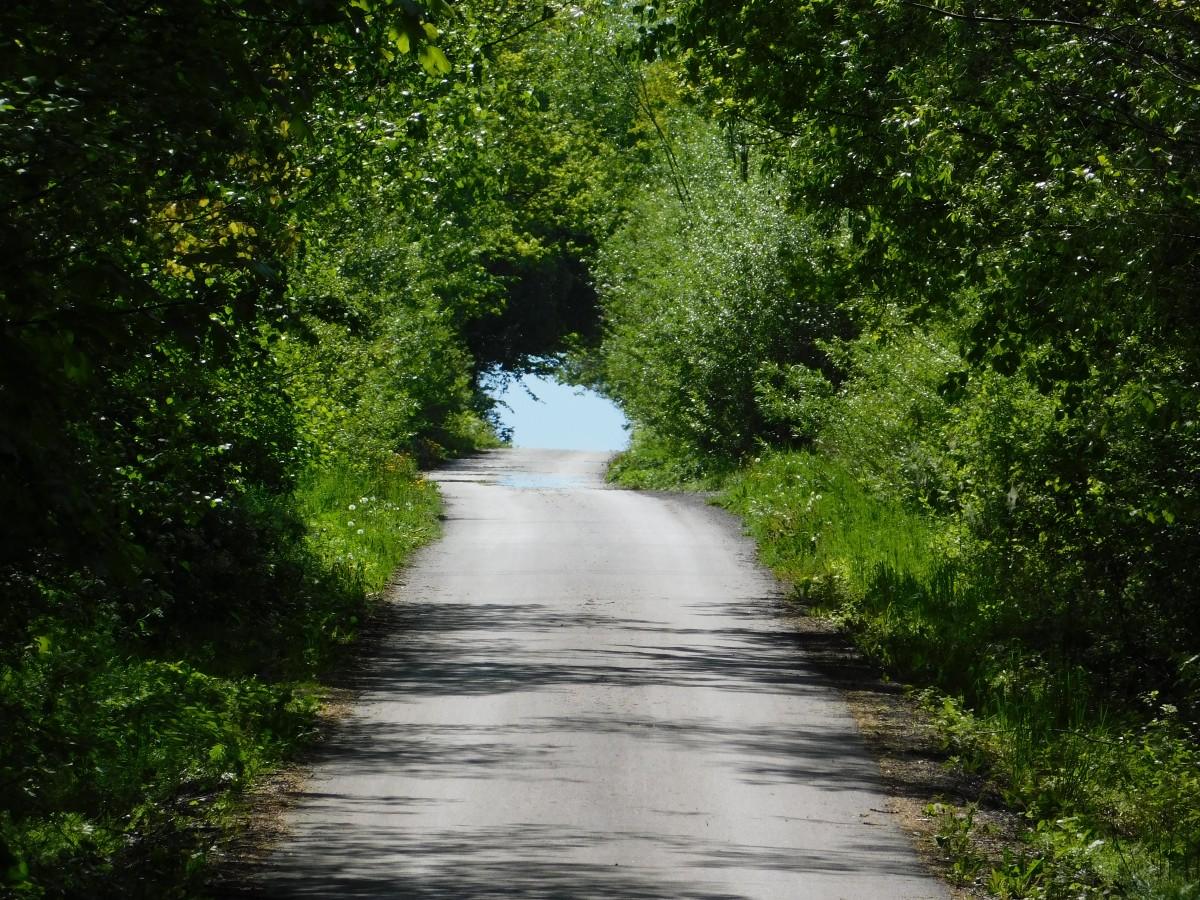 Zdjęcia: Półwieś, małopolska, Droga do...., POLSKA