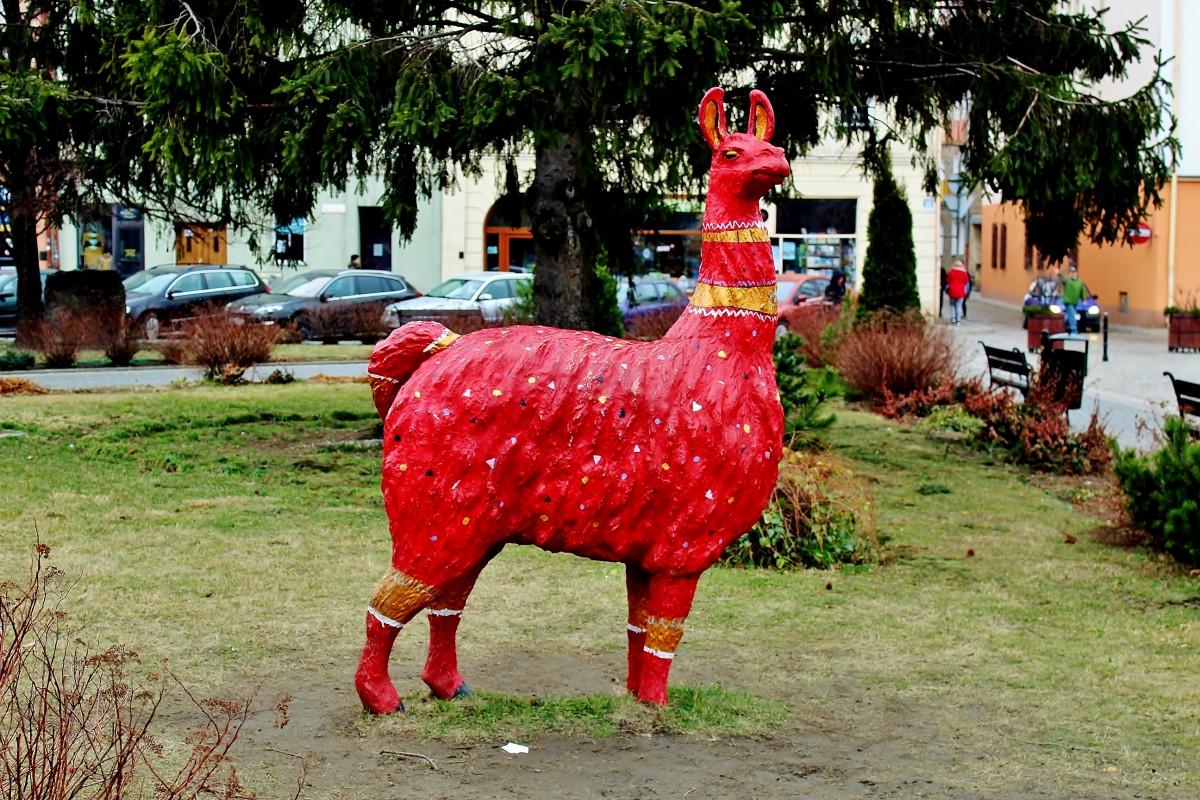 Zdjęcia: Głuchołazy, województwo opolskie, Czerwona lama na głuchołaskim rynku, POLSKA