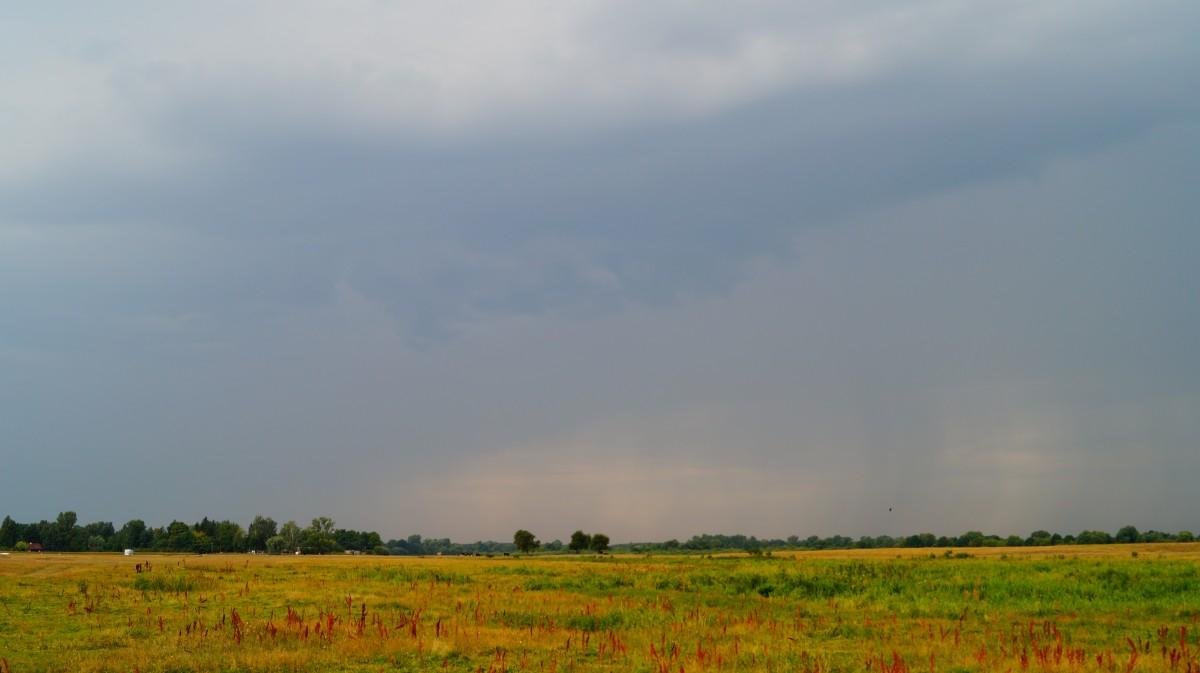 Zdjęcia: Kuligów, mazowieckie, cisza przed burzą, POLSKA
