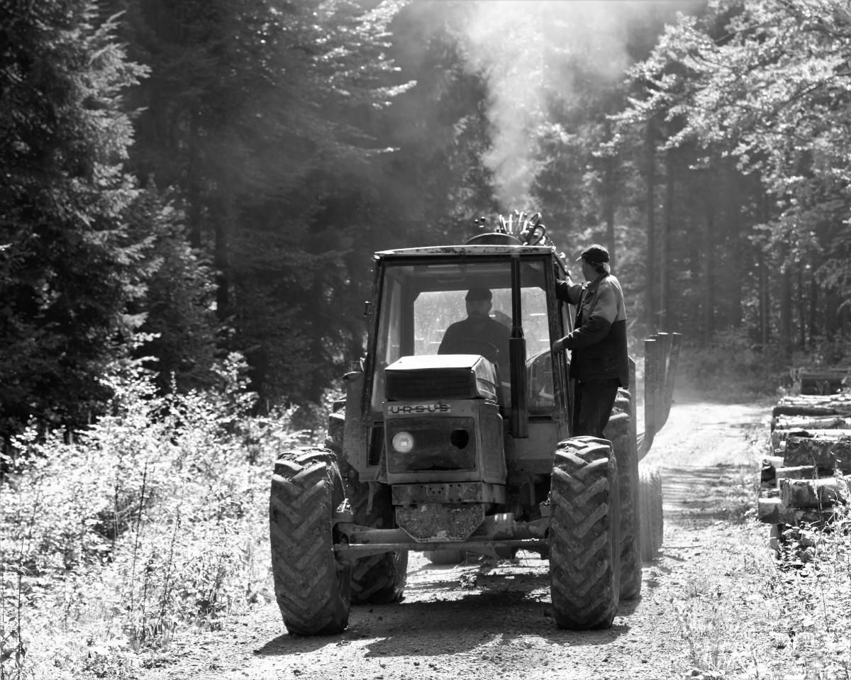 Zdjęcia: Przełęcz Beskid, Beskid Niski, Czarno-białe widoki ... na WiFi ;-), POLSKA